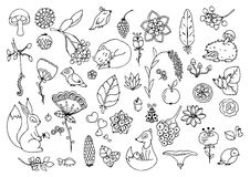 Vector illustration e, set the forest, animals and flowers. Doodle drawing. Meditative exercises. Coloring book anti Royalty Free Stock Photo