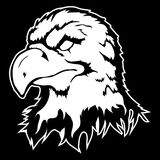 Vector illustration of an eagle head Stock Photos