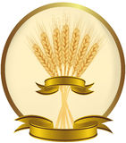 Vector illustration. Ears of wheat and ribbons. Royalty Free Stock Images