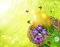 Vector illustration. Easter card with colorful eggs and crocuses. Lying in a wicker basket against the background of grass and sky. Design element, greeting Stock Photography