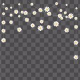 Vector Illustration.Easy to edit to your design. Garland made of camomile on transparent background. Decorative elements for desig. N Royalty Free Stock Photos