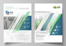 The vector illustration of the editable layout of two A4 format modern covers design templates for brochure, magazine. Flyer, report. Rows of colored diagram Royalty Free Stock Photography