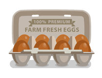 Vector illustration eggs. In carton on white background Stock Photography