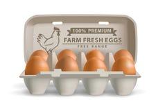 Vector illustration eggs Stock Photo