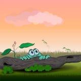 Vector Illustration eines grünen Frosches und der Heuschrecken Stockbilder