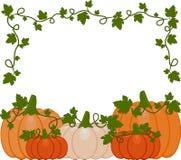 Vector Illustration eines Hintergrundes der orange und weißen Kürbise stock abbildung