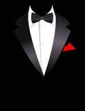 Vector illustration of elegant suit royalty free illustration