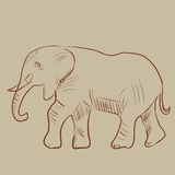 Vector illustration of an elephant. Hand-drawn. Sketch Royalty Free Stock Photo