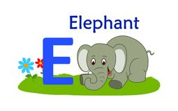 Animal alphabet E.E for elephant. Vector illustration of elephant with letter e isolated on white background.E for elephant Royalty Free Stock Image