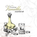 Vector illustration of essential oil of vanilla Stock Photos