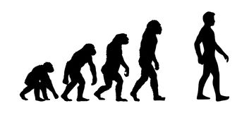 Evolution. Vector illustration of evolution progress with 5 different human figures isolated on white background. High quality illustration Royalty Free Stock Image