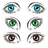 Vector illustration eye human black eyeball Stock Images