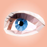 Vector illustration of eye Royalty Free Stock Photo