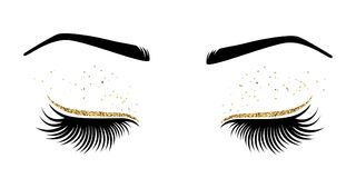 Vector illustration of eyes with long eyes lashes. For beauty salon, lash extensions maker Royalty Free Stock Images