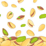 Vector illustration of falling pistachios nuts. Background  a pistachio nut. Pattern   walnut fruit in the shell, whole Royalty Free Stock Image