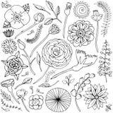 Vector illustration fantasy flower doodles set black and white. Plants isolated on white background stock illustration