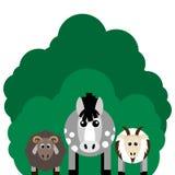 Vector illustration of farm animals. Horse, sheep, goat. Stock Photo