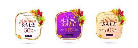 Vector illustration of fashion autumn sale banner set isolated on white. Background with white round geometric frame, color lines, calligraphy text sign 50 Stock Images