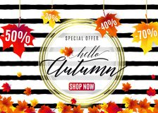 Vector illustration of fashion autumn sale poster. Vector illustration of fashion hello autumn sale poster with white round geometric frame, golden lines, text Royalty Free Stock Image