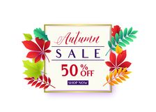 Vector illustration of fashionable autumn sale card template. With geometric frame, text sign 50 percent off, falling multicolor leaves oak, rowan, maple, birch Stock Photo