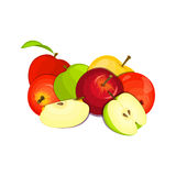 Vector illustration of a few apples. Yellow, red and green apple fruits appetizing looking. Group of tasty fruits. Vector drawing of a few apples. Yellow, red Royalty Free Stock Images