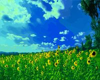 Vector illustration of a field of sunflowers. royalty free illustration