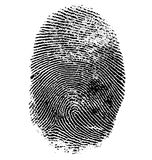 Vector illustration of fingerprint Stock Photography