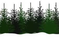 Vector illustration of fir trees in snow Royalty Free Stock Photo