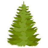 Vector illustration with fir-tree. In flat style isolated on white Stock Images
