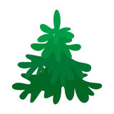 Vector illustration with fir-tree. In flat style isolated on white Royalty Free Stock Photos
