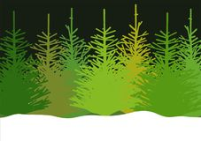 Vector illustration of fir trees in snow Stock Photography