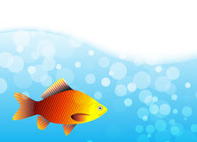 Vector illustration of a fish Stock Photo