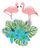 Vector Pink Flamingo, Tropical Flowers Stock Photography