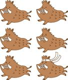 Cute running wild boar facial expressions set.Emotions happy,anger,gallant.Vector illustration.Flat design.Cartoon character set. stock illustration