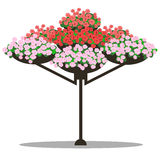 Vector illustration of floral arrangement Royalty Free Stock Photos