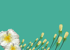 Vector illustration floral background design Royalty Free Stock Photo