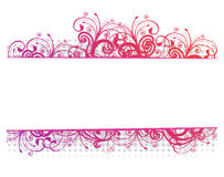 Vector illustration of a floral border Stock Photography