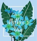 Vector Mother`s Day Card With Tropical Flowers Stock Photography