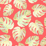 Vector illustration of floral seamless. Monstera leaves on a red Stock Photo