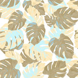 Vector illustration of floral seamless.Monstera leaves on a whit Royalty Free Stock Photo