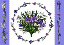 Vector illustration. Floral template of floral bunch, wreath of lilies and crocuses and borders isolated on white stock illustration