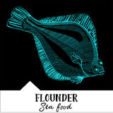 Vector illustration flounder for a seafood menu Royalty Free Stock Image
