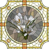 Vector illustration of flower crocus. Royalty Free Stock Photography