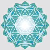 Flower of Life  blue print Stock Photography