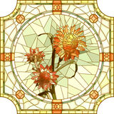 Vector illustration of flower orange immortelle. Royalty Free Stock Images