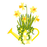 Vector illustration with flower pot Royalty Free Stock Photos