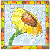 Vector illustration of flower sunflower. Royalty Free Stock Photo
