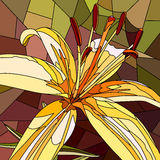 Vector illustration of flower yellow lily. Stock Photos