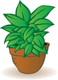 Vector illustration a flowerpot Royalty Free Stock Image