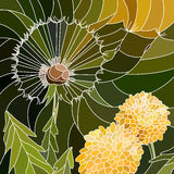 Vector illustration of flowers dandelion. Stock Photo